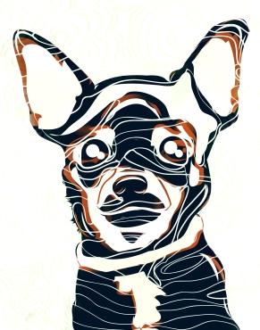 chihua-head