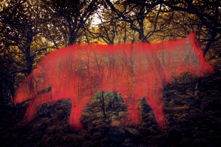 neon-wolf